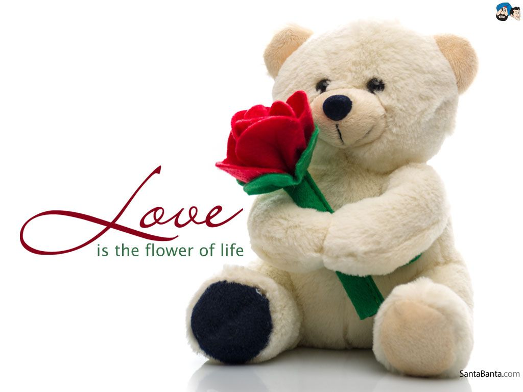 Love quotes on love is the symbol of real love