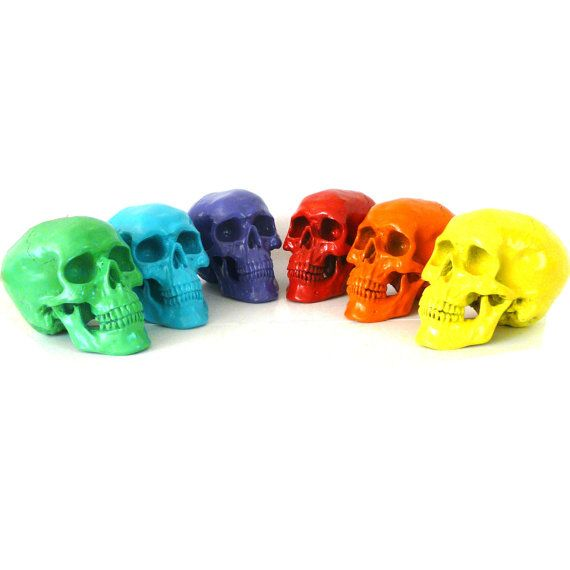 Rainbow Skull Set, Faux Taxidermy, Skulls, Rainbow Colors, Spectrum, Gay  Pride
