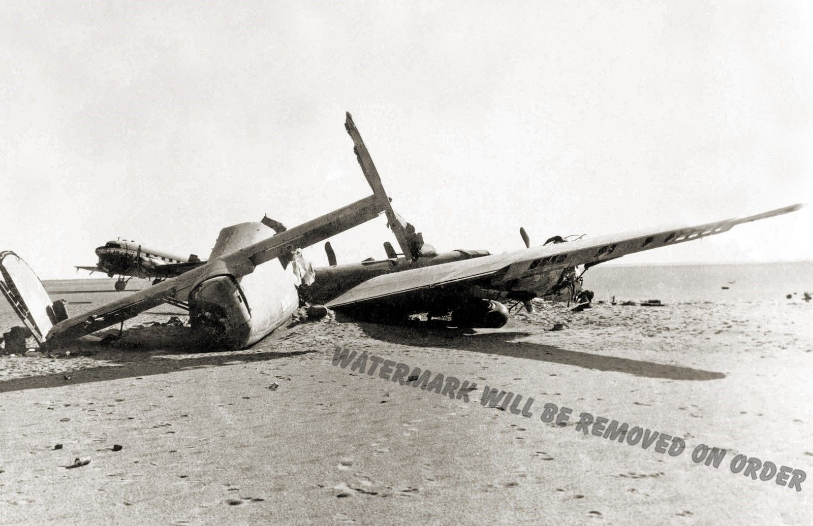 Photograph WWII B-24 Liberator Lady Be Good  Crash Site Libya Year 1959  11x17