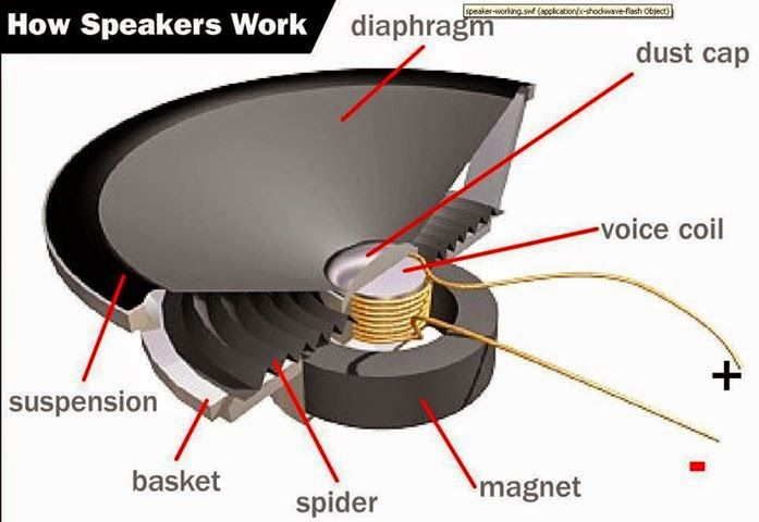 parts of a speaker electrical engineering pics parts of a rh pinterest com Home Theater Speakers Diagram Car Speaker Diagram