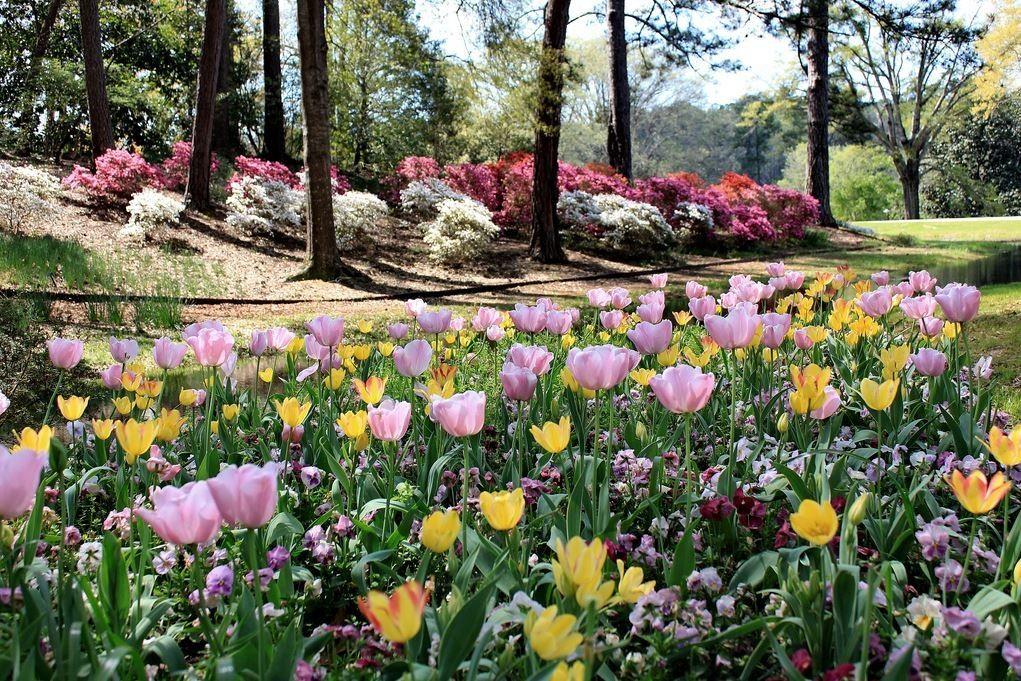 Warm Springs Ga To Callaway Gardens