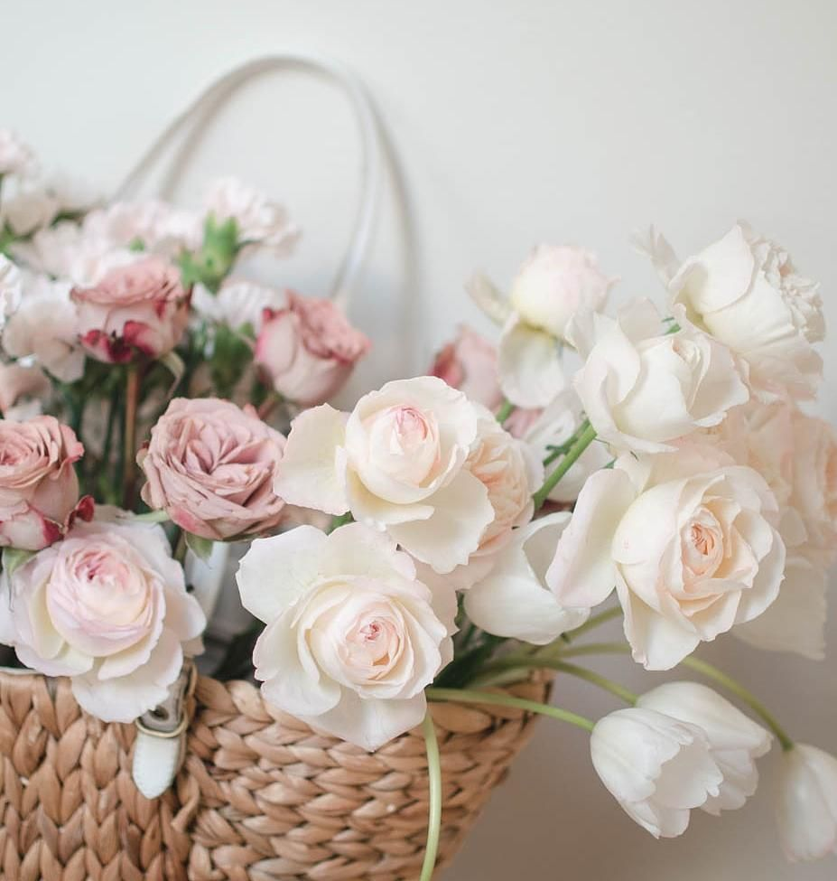 Beautiful Garden Roses in shades of blush and cream