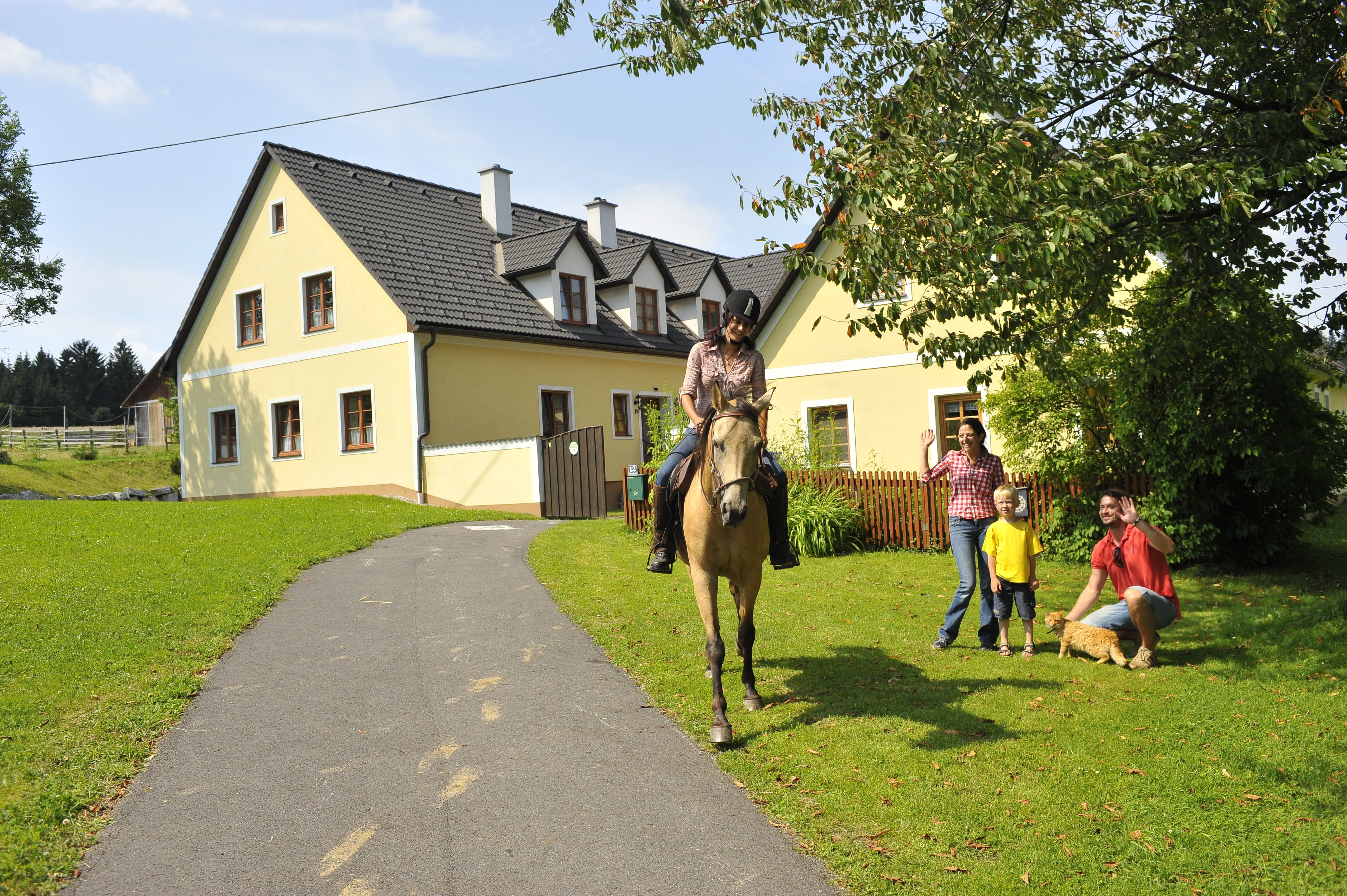 Urlaub am Reiterbauernhof  www.urlaubambauernhof.at/niederoesterreich