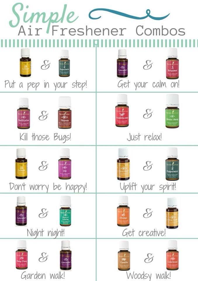 Idea by JKLL Mathews on Essential Oils!   Homemade air ...