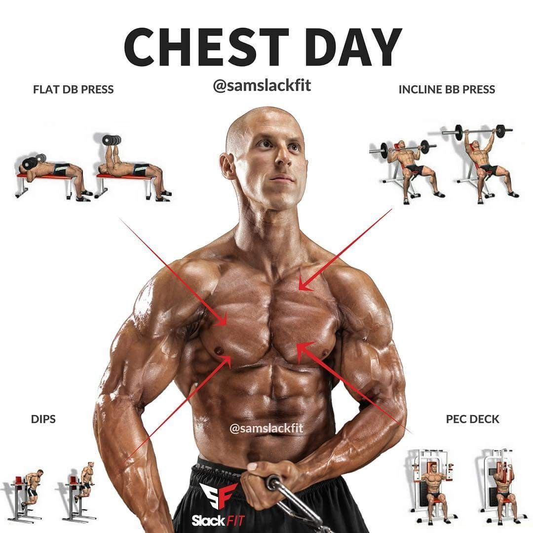 Chest Groups