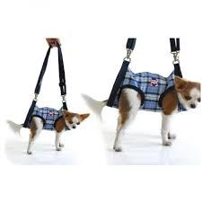 Resultado de imagem para mochila para cachorro andar de moto