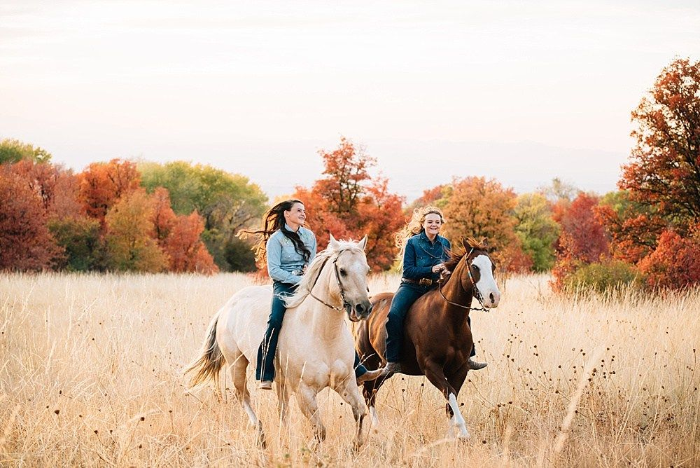Fall Horse Pictures – Lowe Kids
