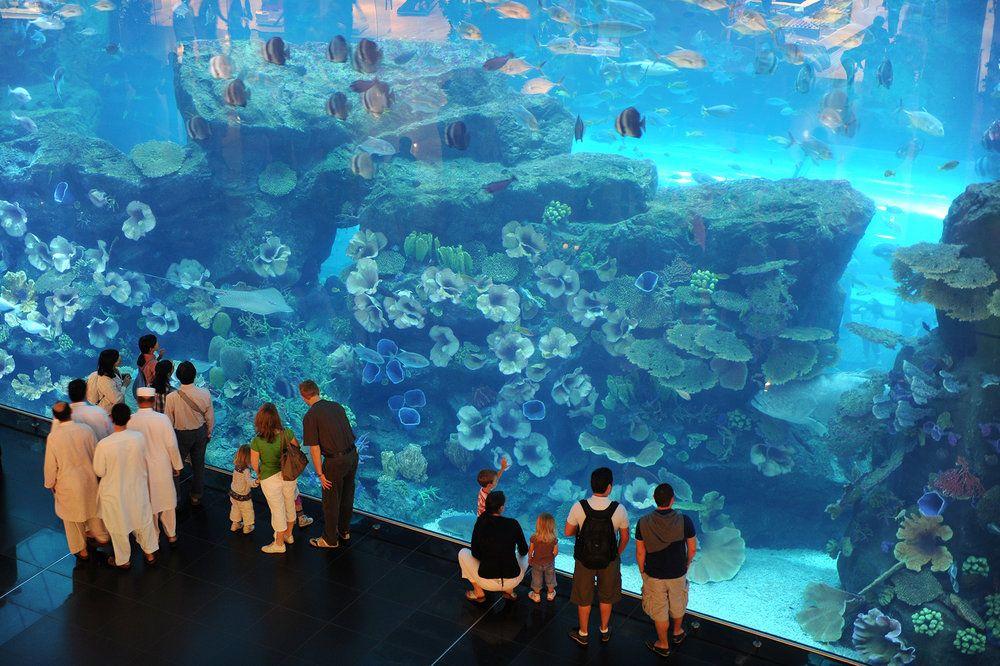 Dubai, Yhdistyneet Arabiemiraatit, Yhdistyneet Arabiemiirikunnat, kaupunkiloma, kaupunkimatka, matka, matkavinkit, metropoli, suurkaupunki, The Mall, ostoskeskus, akvaario