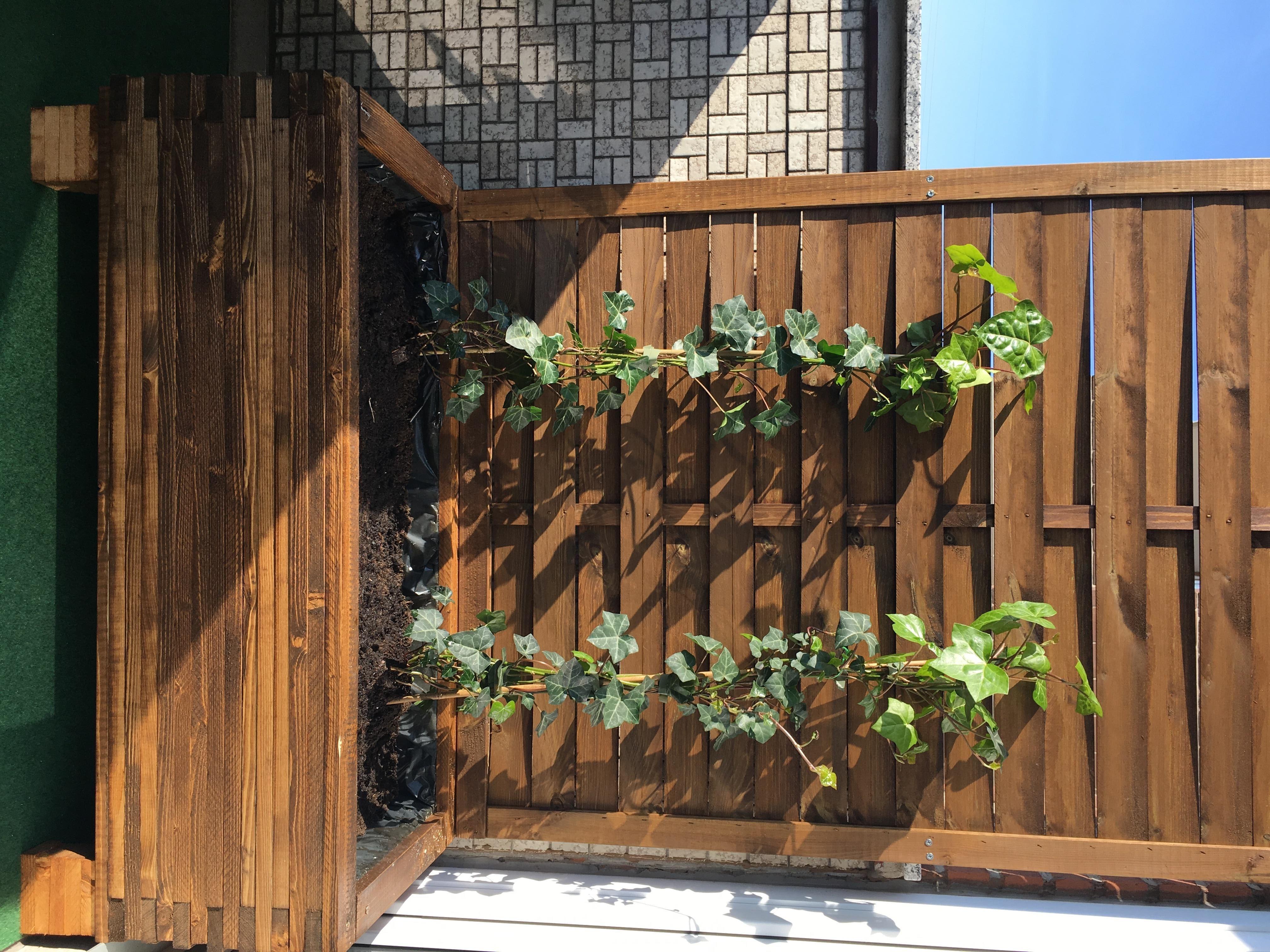 Balkon Sichtschutz Blumenkubel Diy Anleitung Balkon Sichtschutz