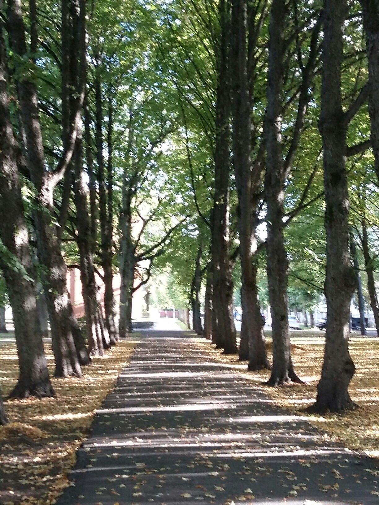 Estonia Pärnu