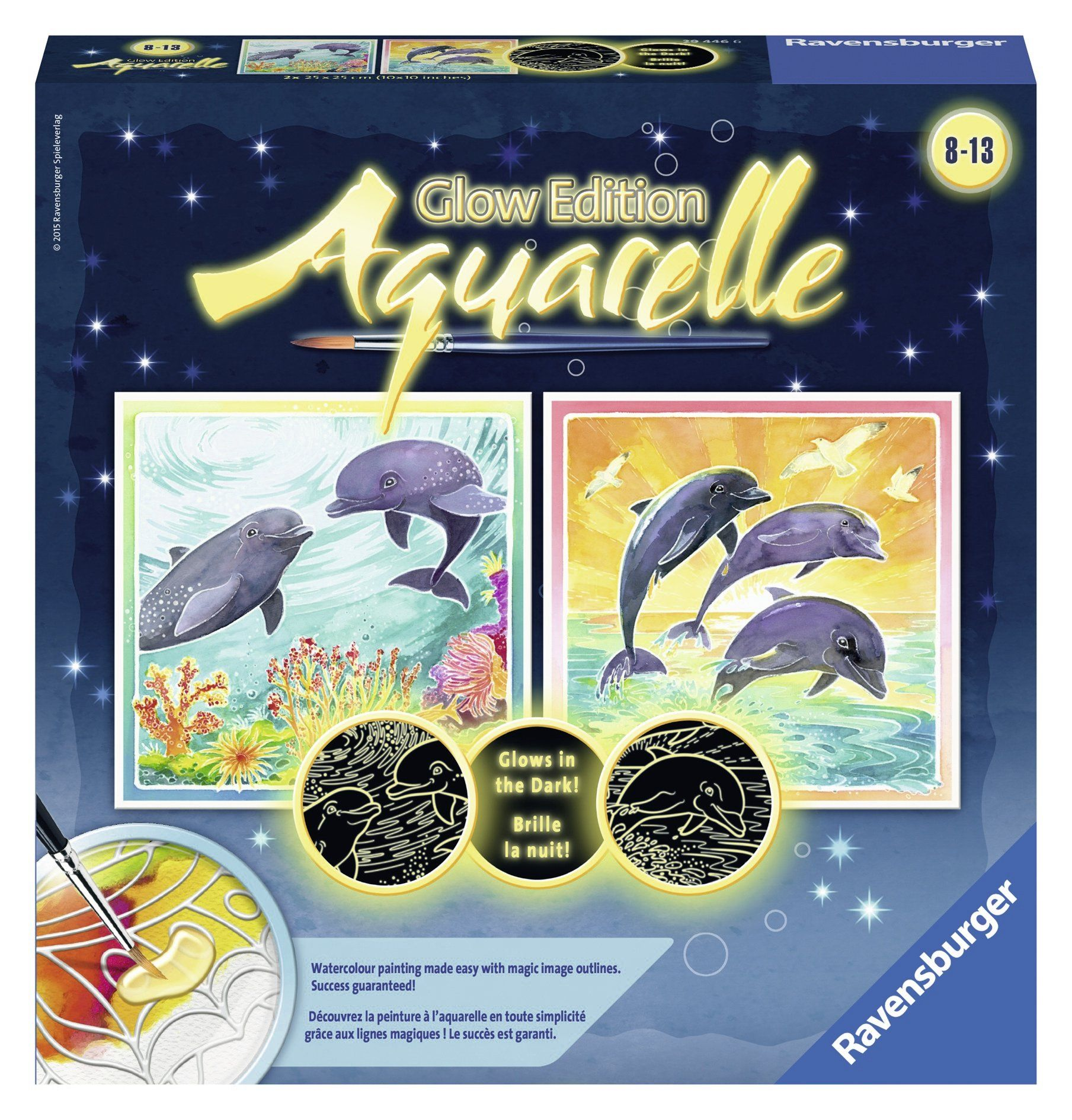 Heck Of A Bunch Aquarelle Glow Dolphins Arts Crafts Kit