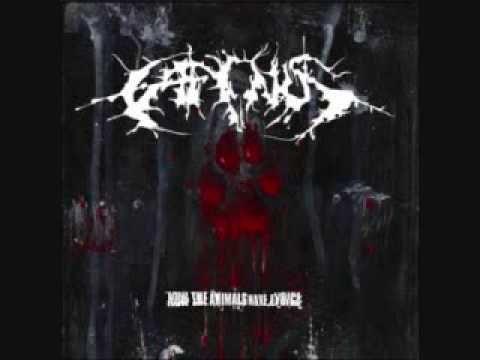 Caninus, Grind Death, USA.  pour ceux qui se demandent: oui, les chanteurs sont deux chiens (pitbulls)