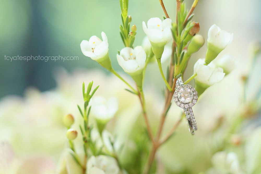 Macro ring shot | Tulsa Wedding Photography | Dresser Mansion | www.tcyatesphotography.com