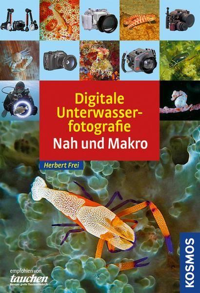 digitale unterwasserfotografie  unterwasser fotografie