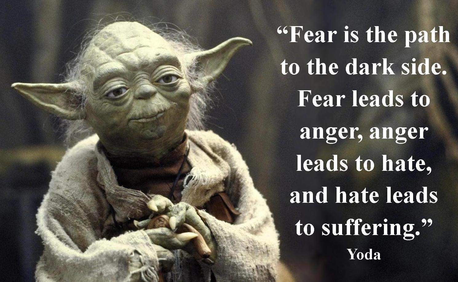Image result for yoda fear and hate