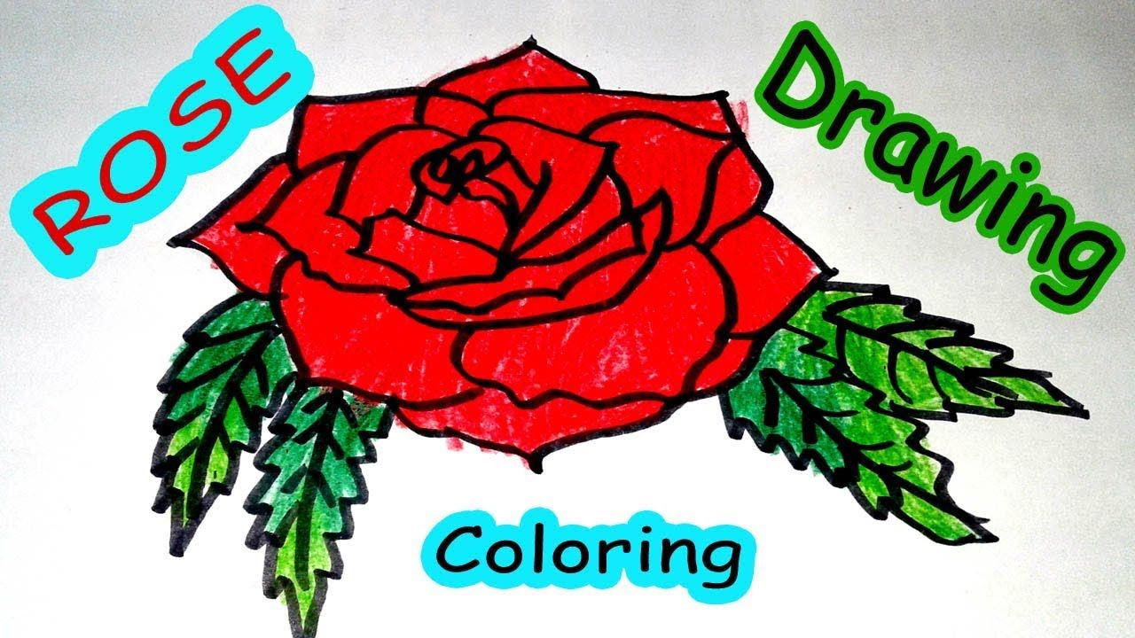 Easy Rose Drawing And Coloring Video For Kids How To Draw Rose Flower Roses Drawing Rose Drawing Rose Drawing Simple