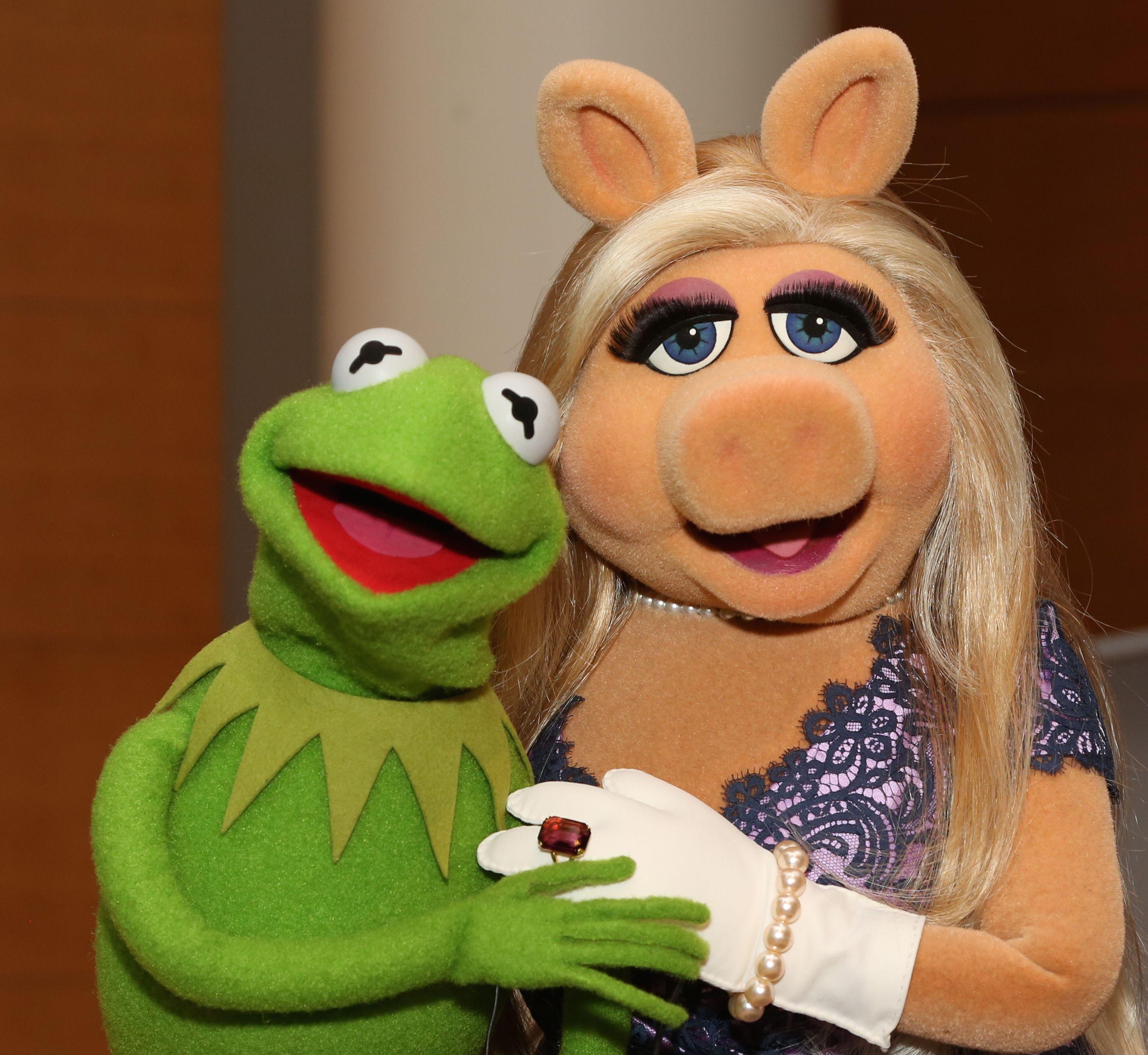 The Muppets Los Teleñecos La Rana Gustavo Triki El: Poll: Should Kermit And Miss Piggy Get Back Together? Cast