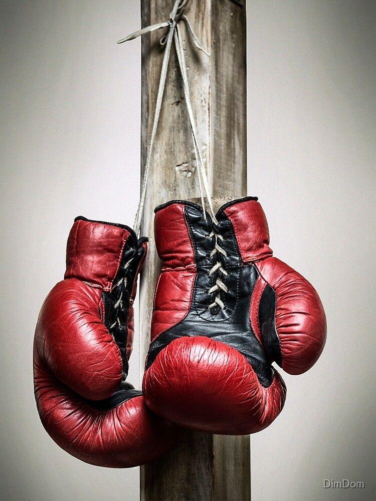 Red, vintage boxing gloves Poster