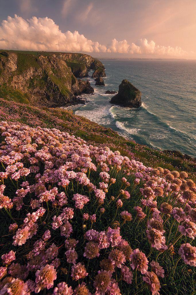 landscape photography ocean #LandscapePhotographyTips