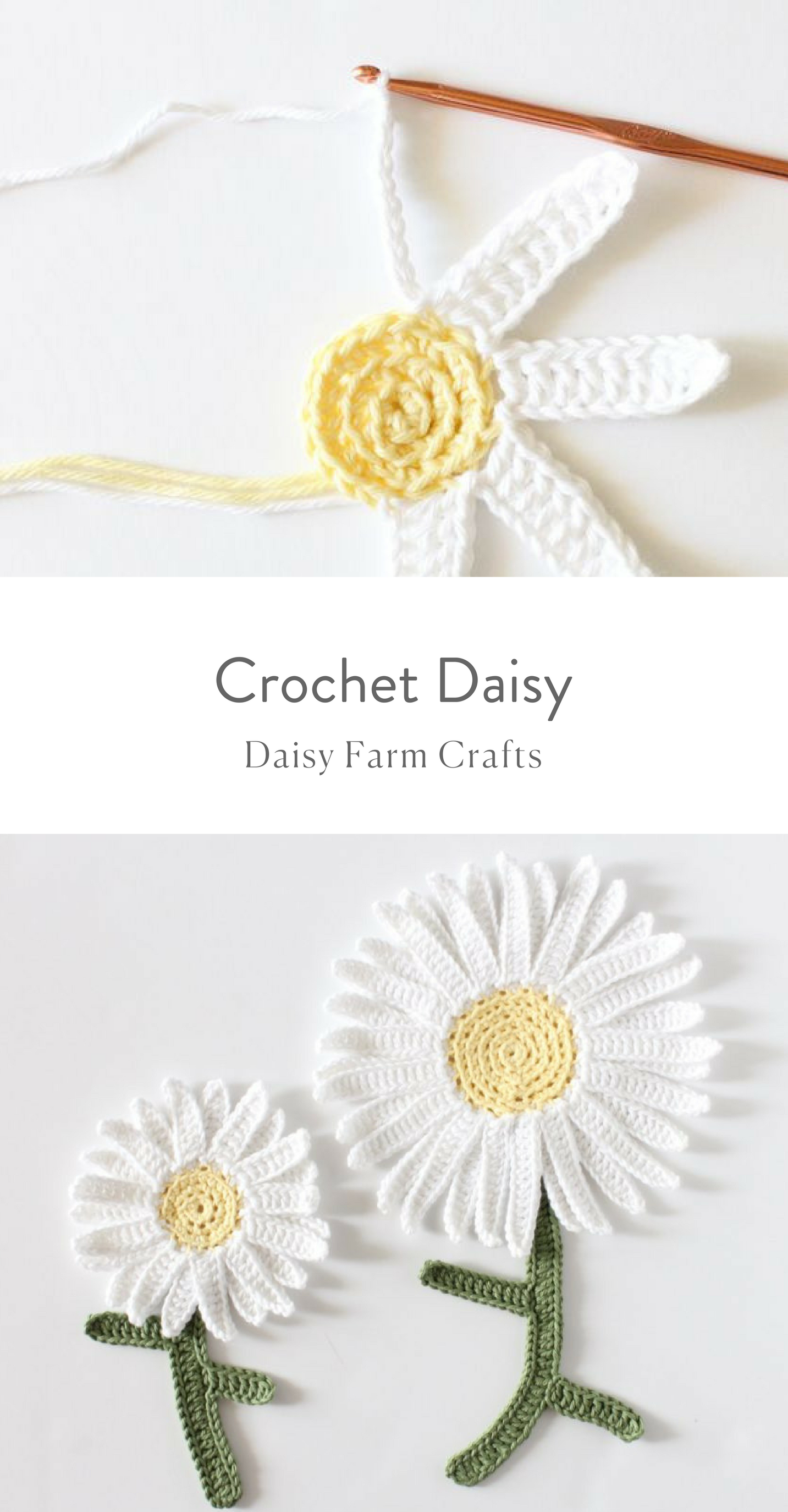 Free Pattern - Crochet Daisy #crochetflowerpatterns