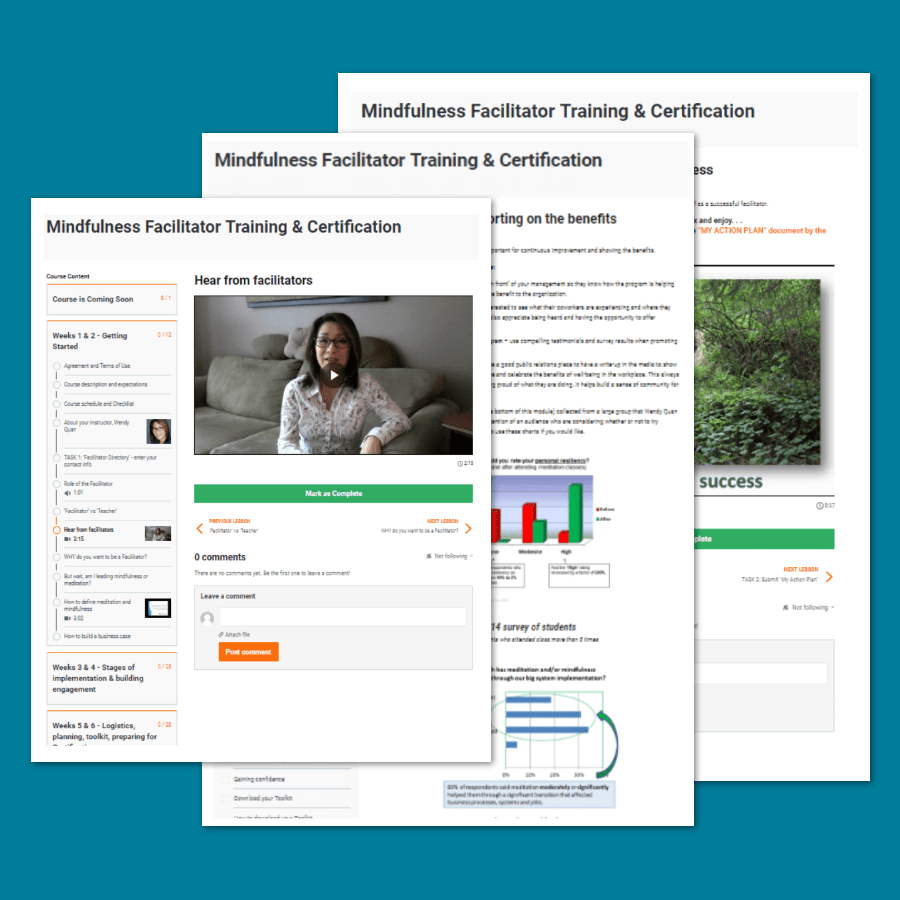 Mindfulness Facilitator Certification By
