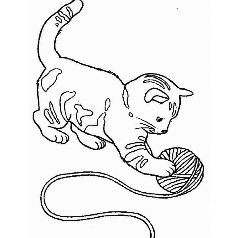Coloriage a imprimer coloriage de chat coloriage chat - Image de chat a colorier ...