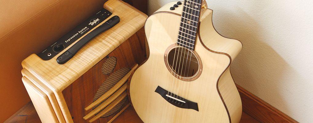Builder S Reserve Series V Taylor Guitars Taylor Guitars Guitar Martin Guitar