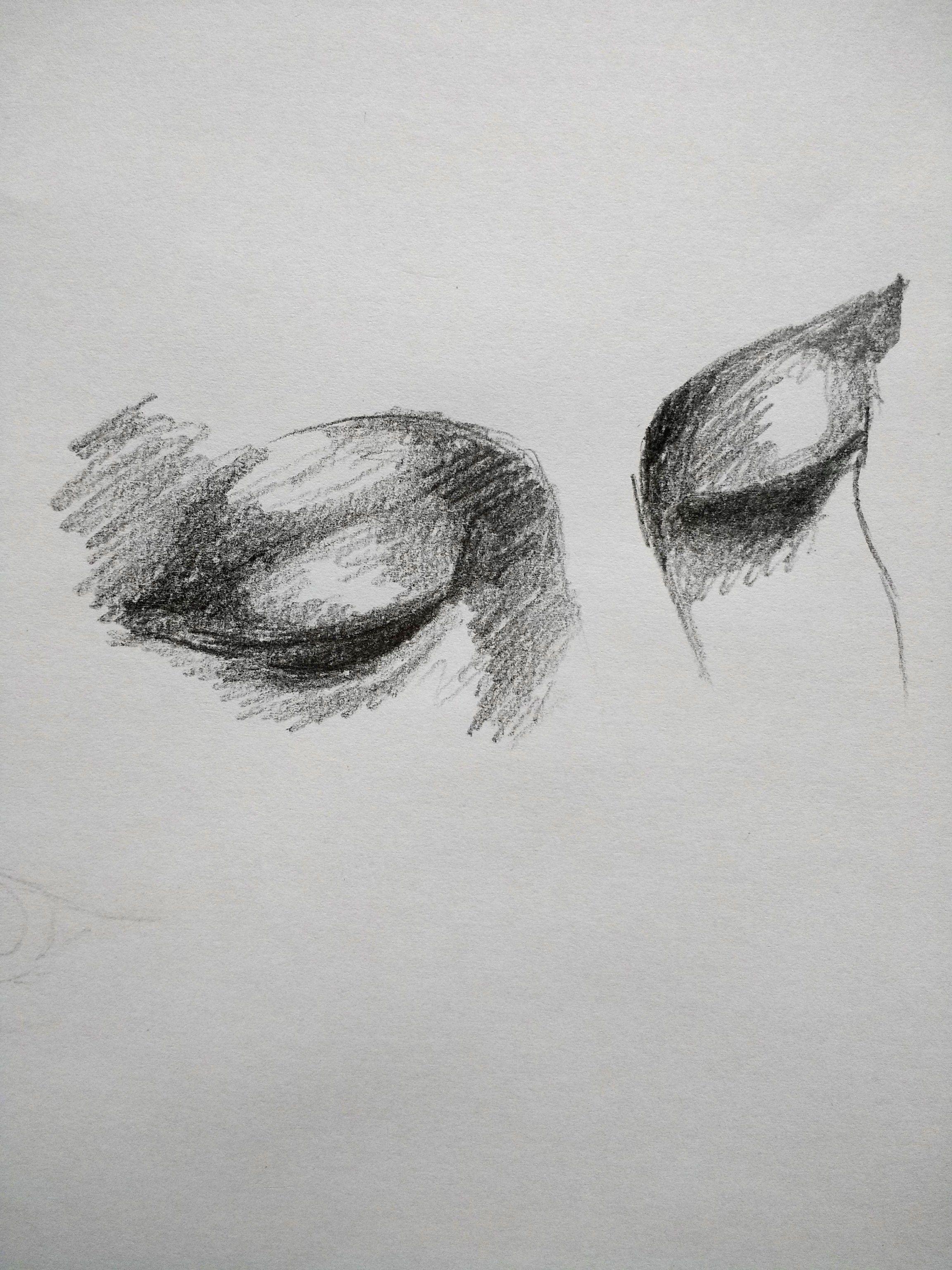 Eye sketch shading exercise