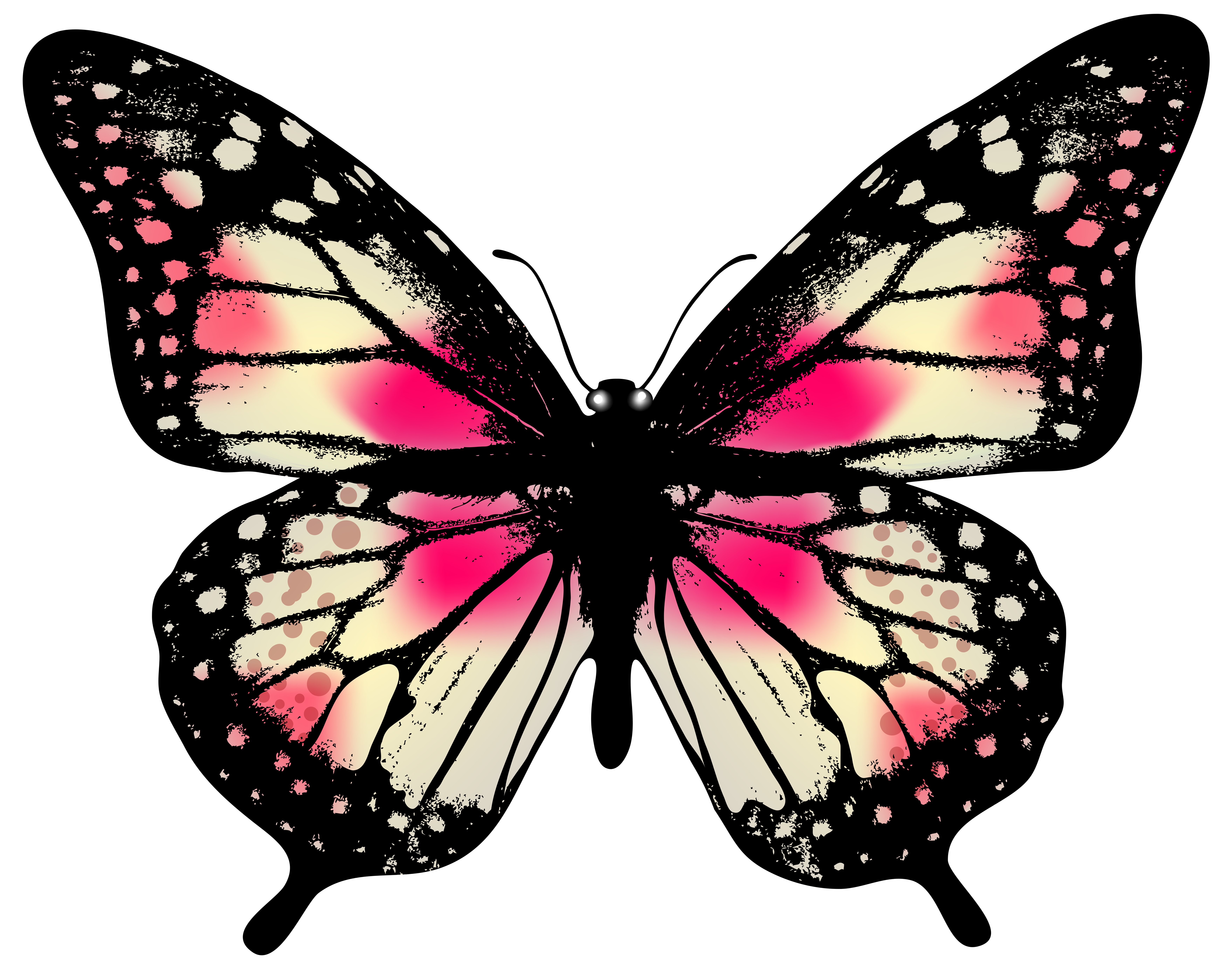 Открытку, бабочки рисунок на прозрачном фоне