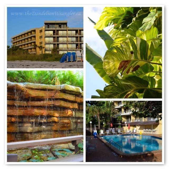 La Quinta Inn Suites Oceanfront Cocoa Beach Fl Fantastic Hotel