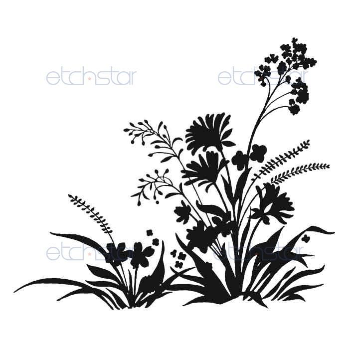 Wildflower Line Drawing : Image result for drawings of wildflowers line drawing