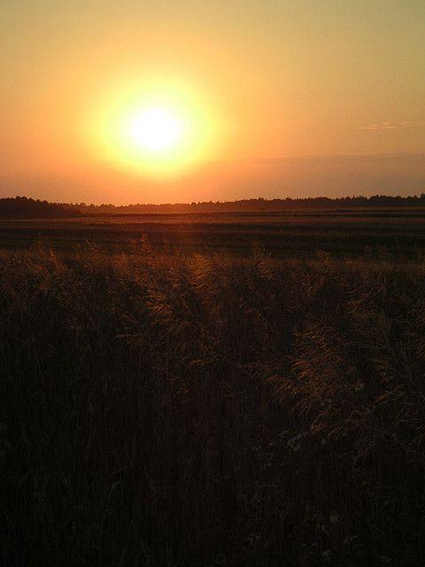 sunsets2004_07