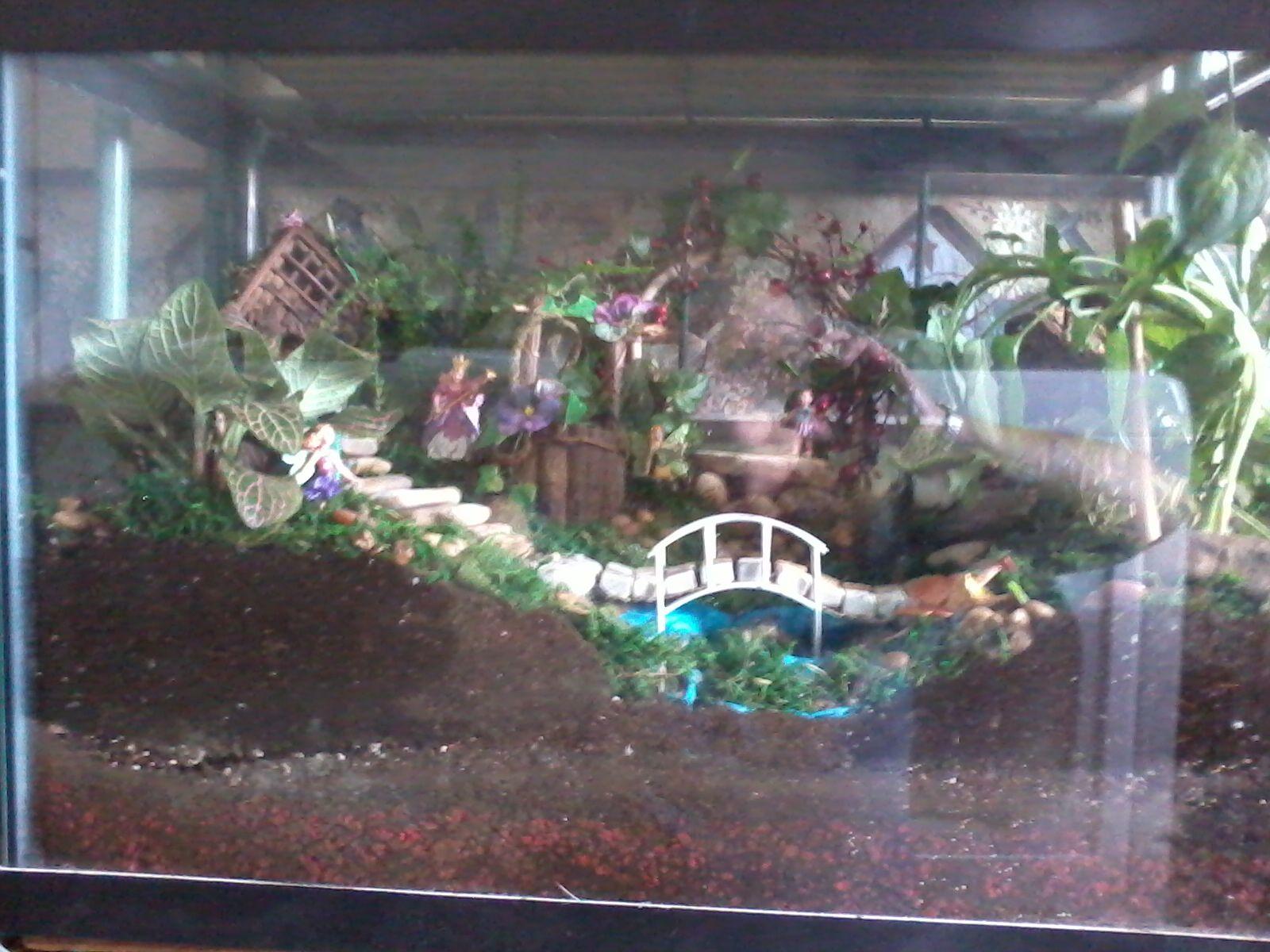 My Fish Tank Fairy Garden Fairy Garden Ideas Indoor
