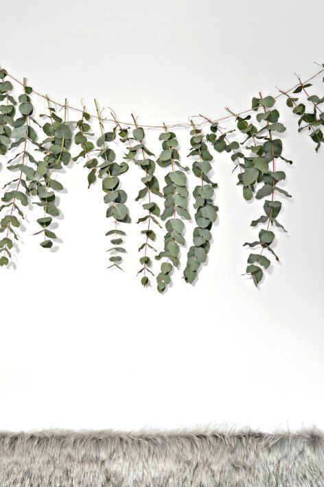 This diy eucalyptus garland not only looks great but smells so good too. This easy homemade Christmas garland is great for the festive season but you can also make this fresh eucalyptus garland at other times of the year. Click through to make this minimal Christmas diy and you'll also find lots more easy Christmas crafts. #eucalyptus #christmasdecorideas #garland #greenery