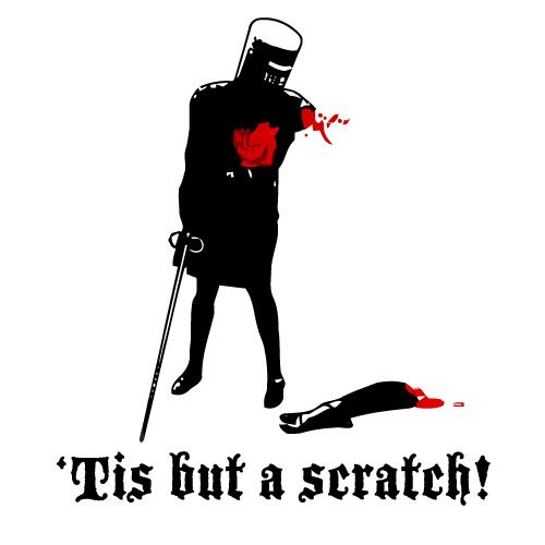 """""""It's just a flesh wound!""""  ...@Kaley Adams. This is from Monty Python, if you remember the convo we had last time I was up! lol"""