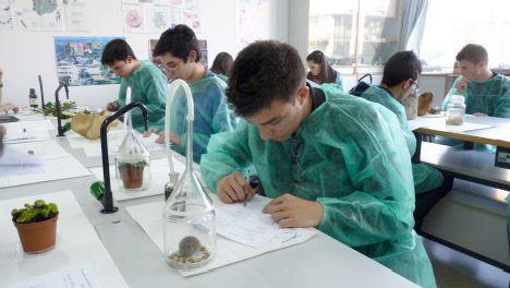 Ya están en marcha las Olimpiadas de Biología 2014. ¡Consulta el calendario de celebración!