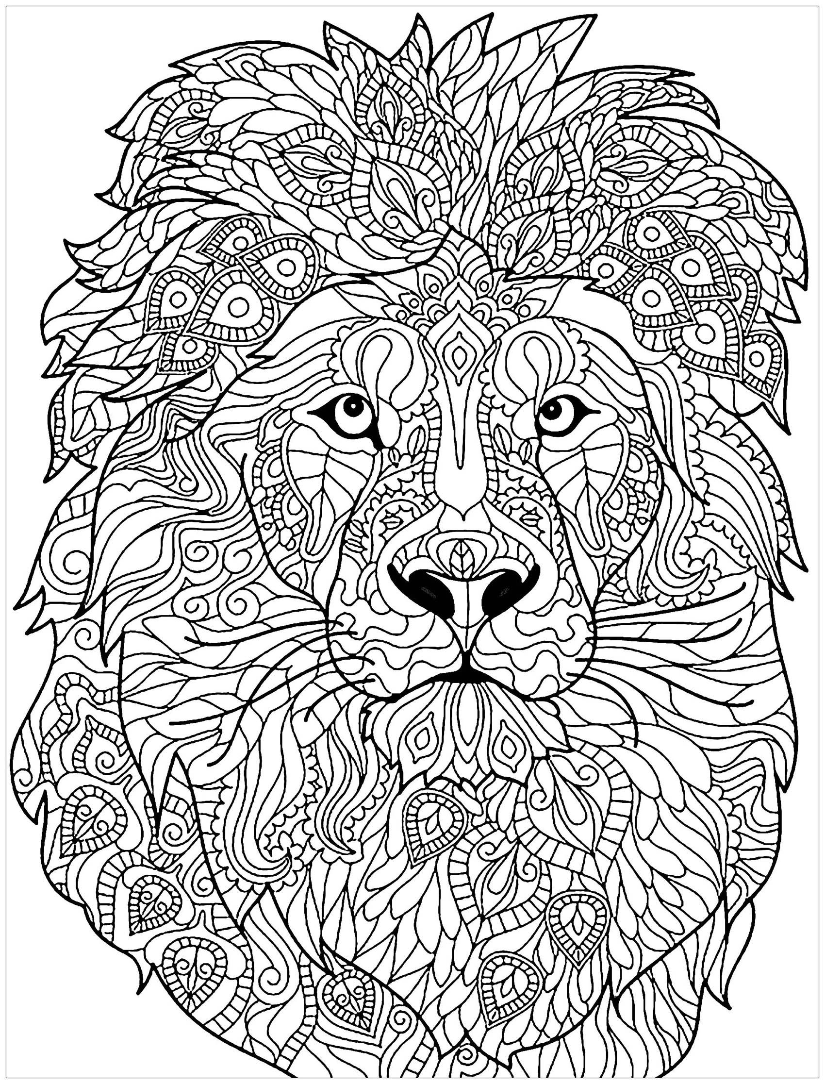 Beautiful Lion Coloring Page From The Gallery Lion Lion Coloring Pages Animal Coloring Books Mandala Coloring Pages