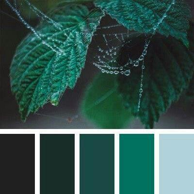 2nd green farben wohnzimmer wandfarbe farbt ne gr ne. Black Bedroom Furniture Sets. Home Design Ideas