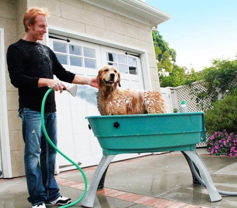 Bath elevated dog wash tub with images dog bath tub