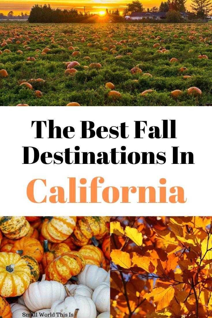 20 Top Fall Destinations In California In 2020 Autumn Destinations California Travel Scenic Road Trip