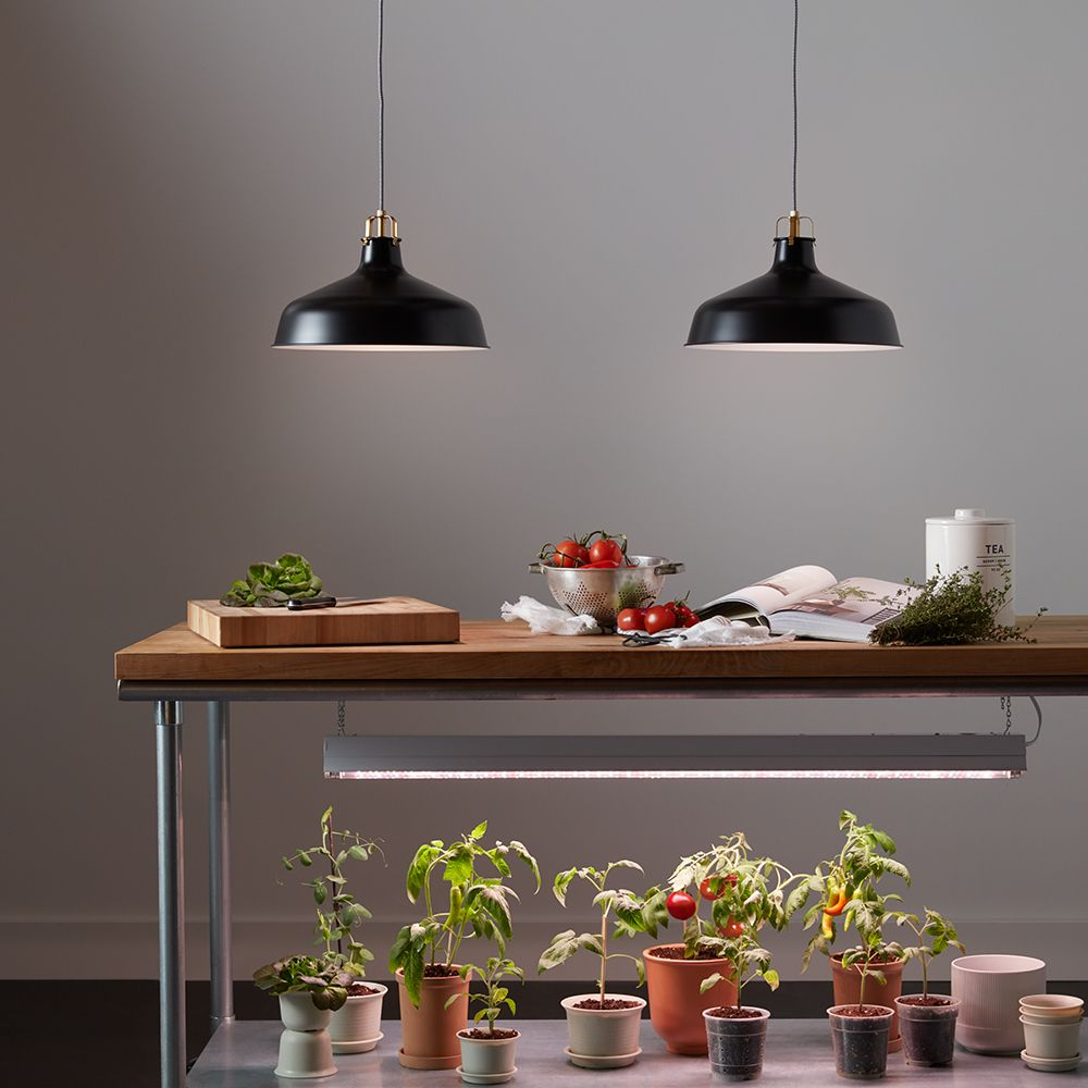 These Indoor Grow Lights Are Surprisingly Chic In 2020 640 x 480