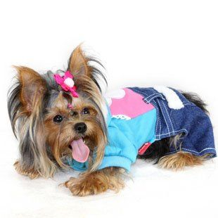 dog clothes pet wearing | The Most Stylish Dogs | Pinterest | Dog