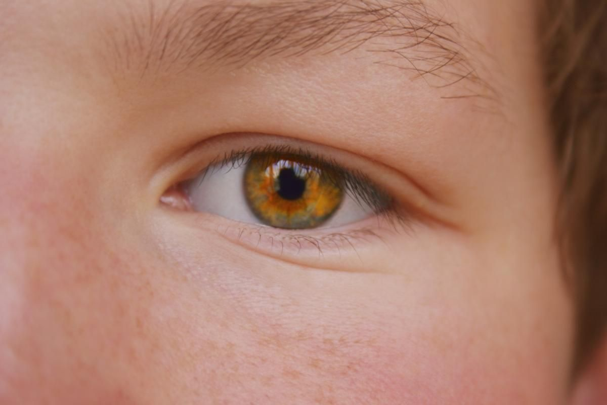 These Facts About Eye Color Percentages Will Blow Your Mind Eye Color Facts Amber Eyes Eye Color