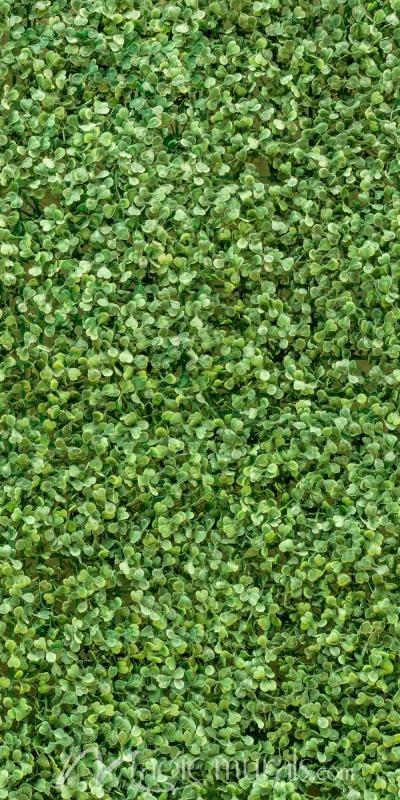 Green Leaf Wall Wallpaper