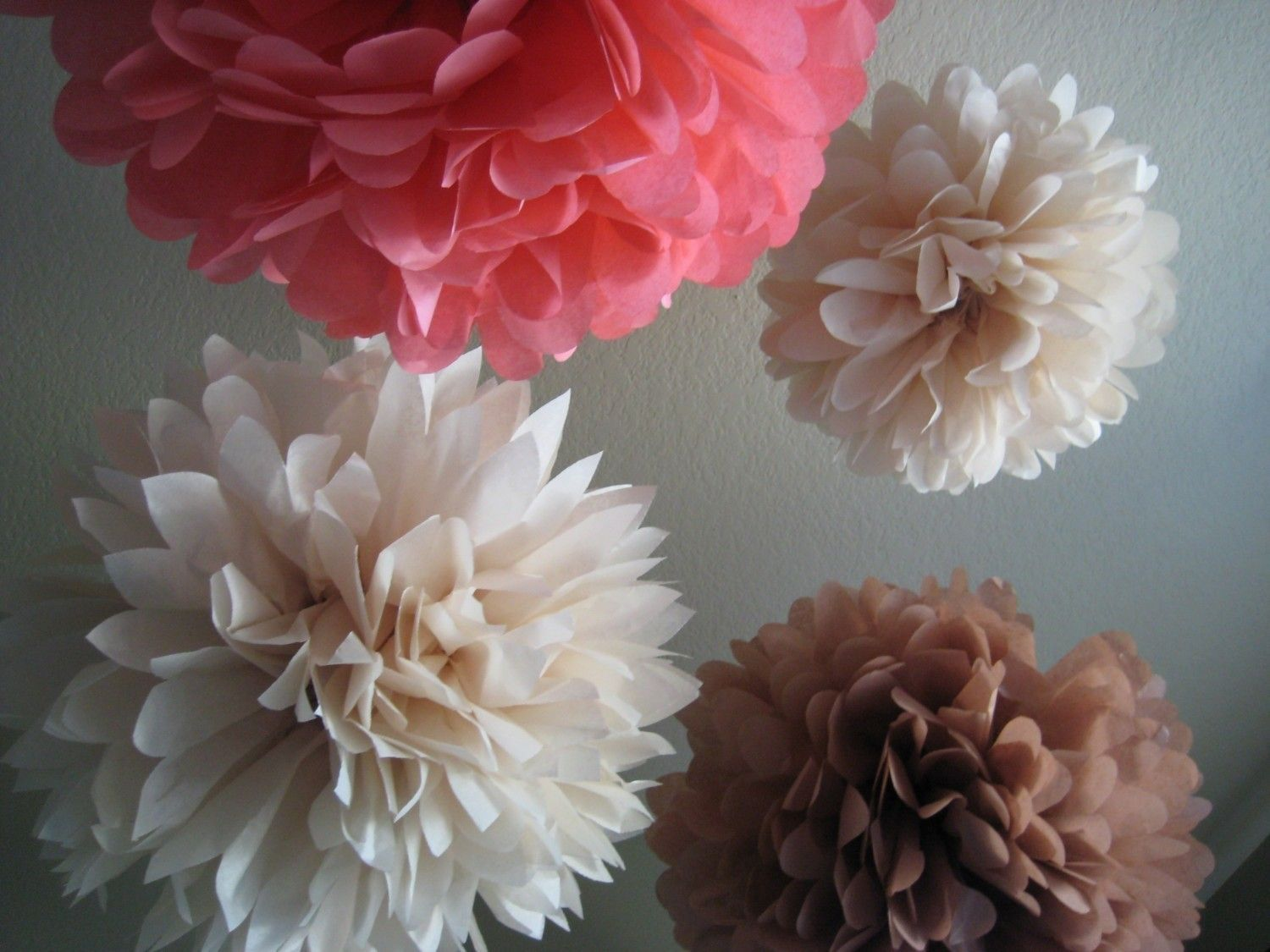 Girl baby shower 5 tissue paper pom pom flower diy decor kit girl baby shower 5 tissue paper pom pom flower diy decor kit frilly paper mightylinksfo Image collections
