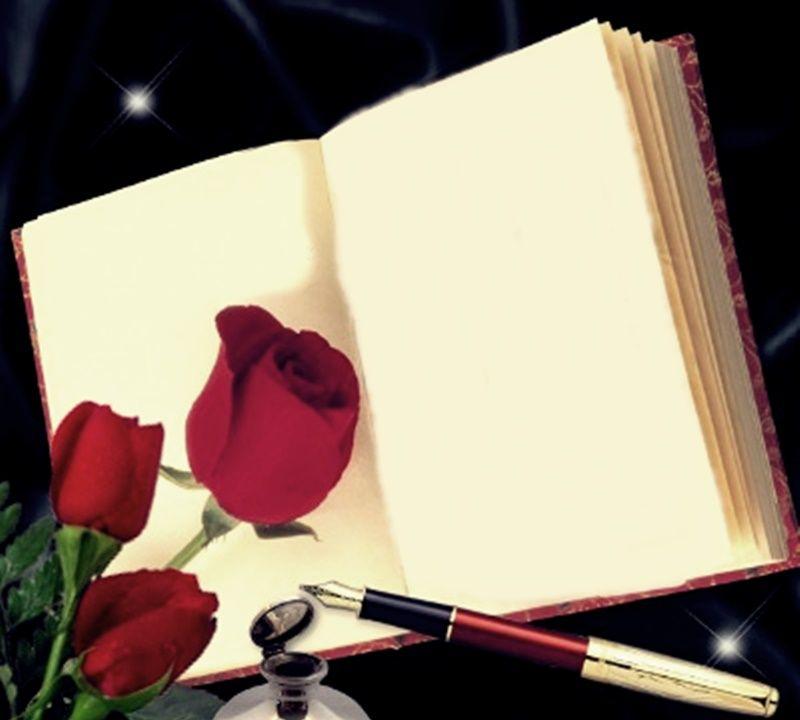 Book And Frame Flower Frame Apple Logo Wallpaper Iphone