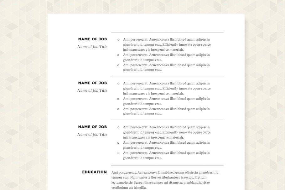 Classic Resume Template Package Resumeclassictemplatetemplates