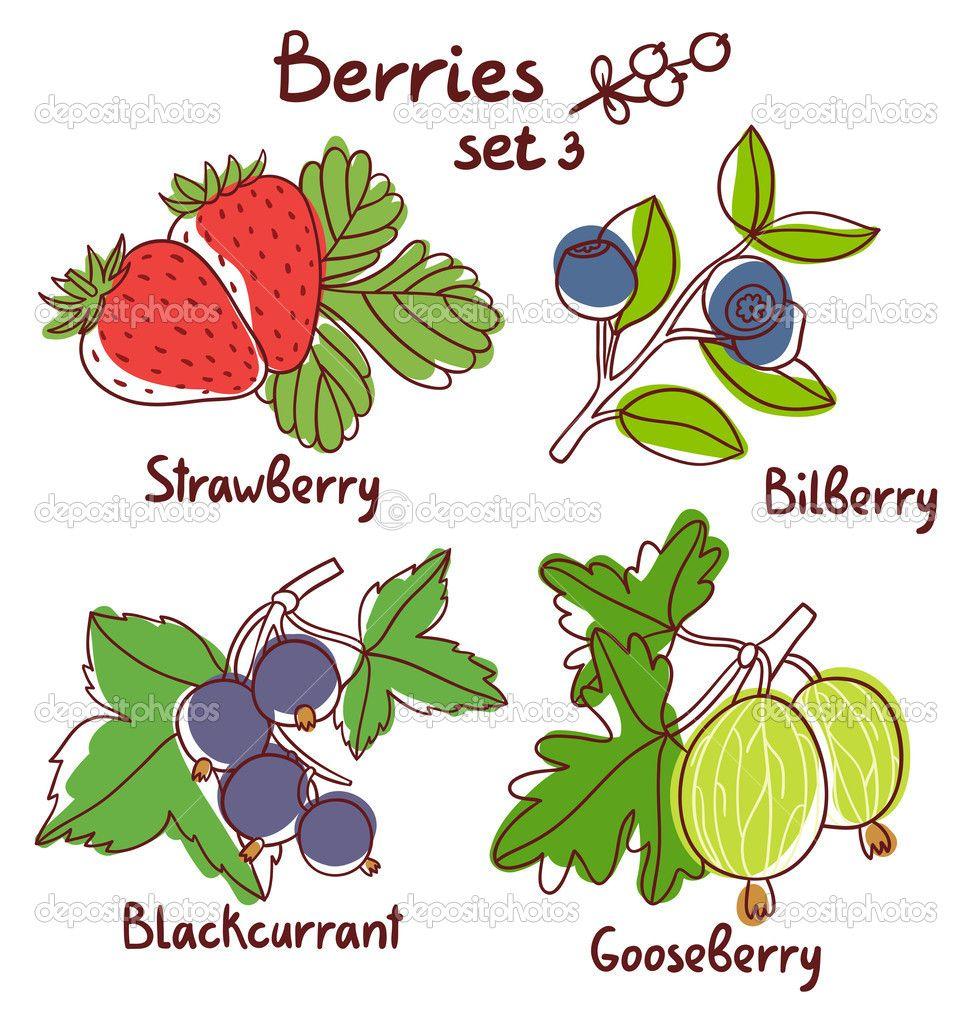 ягоды набор 3 — Стоковая иллюстрация #44087943