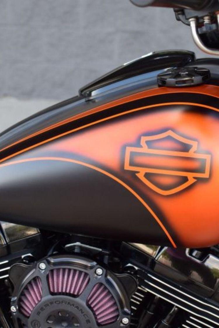 Pin By Driuster On Moto In 2020 Softail Harley Davidson Harley