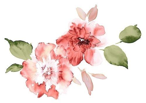Watercolor By Violet Stain S Izobrazheniyami Cvetochnye
